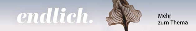 Banner zum Schwerpunktthema Endlichkeit