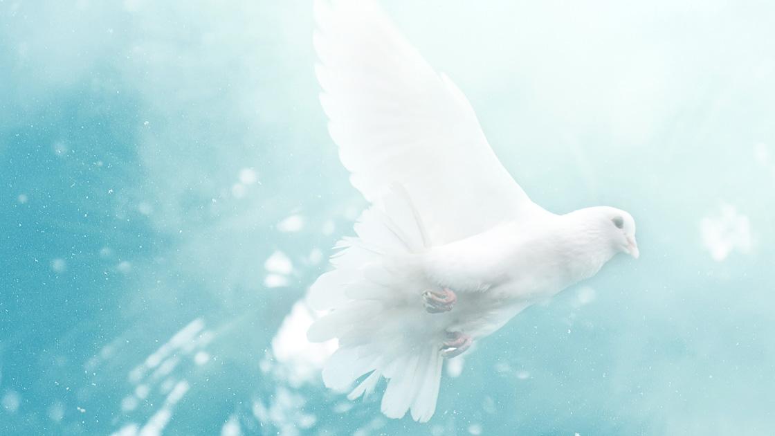 Wie man vom Heiligen Geist erfüllt wird