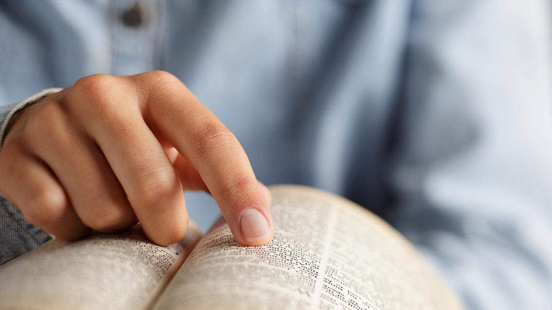 Abenteuer Bibelauslegung - ERF.de